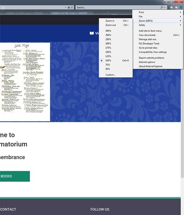 Internet Explorer accessibility settings
